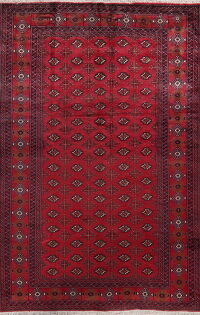 Geometric Red Balouch Persian Area Rug 7x10