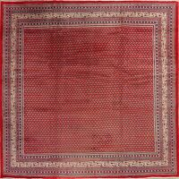 All-Over Red Botemir Persian Area Rug 9x9 Square