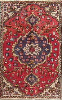 Floral Tabriz Persian Red Area Rug 3x5