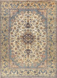 Ivory Floral Najafabad Persian Area Rug 10x13