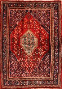Geometric Red Bidjar Persian Area Rug 4x6