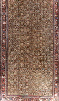 Antique Pre-1900 Sultanabad Persian Rug 13x22 Large