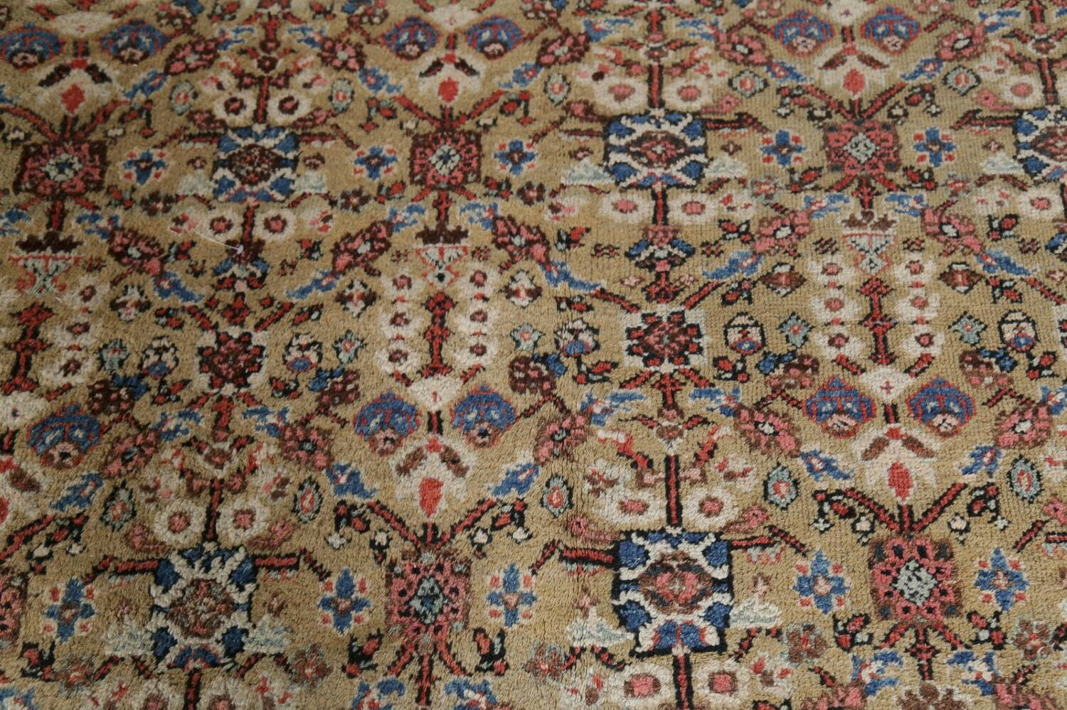 Antique Pre-1900 Sultanabad Persian Rug 13x22 Large image 11