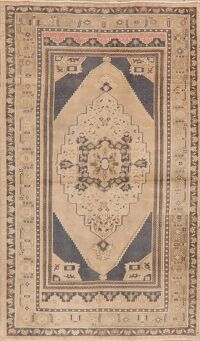 Light Brown Geometric Anatolian Oriental Area Rug 4x6
