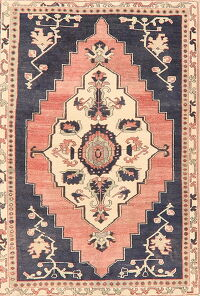 Geometric Anatolian Turkish Area Rug 4x6