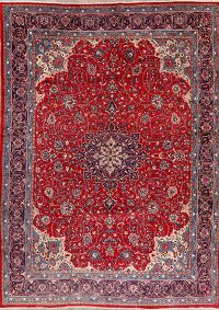 Vintage Floral Red Sarouk Persian Area Rug 9x13