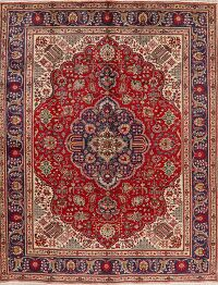 Floral Red Najafabad Persian Area Rug 8x11