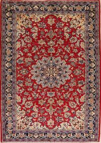 Vintage Floral Red Najafabad Persian Area Rug 7x10