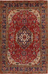 Geometric Tabriz Persian Red Area Rug 7x10