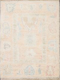 Vegetable Dye Muted Oushak Turkish Area Rug 2x3