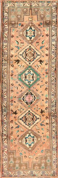 Animal Pictorial Tribal Abadeh Persian Runner Rug 3x10