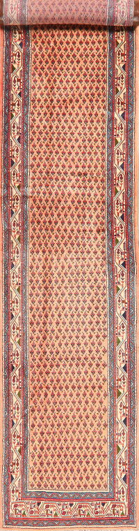 All-Over Peach Botemir Persian Runner Rug 3x14