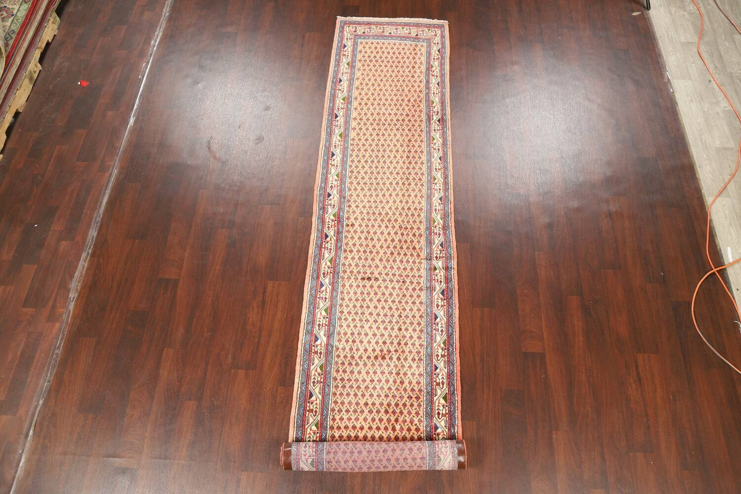All-Over Peach Botemir Persian Runner Rug 3x14 image 2