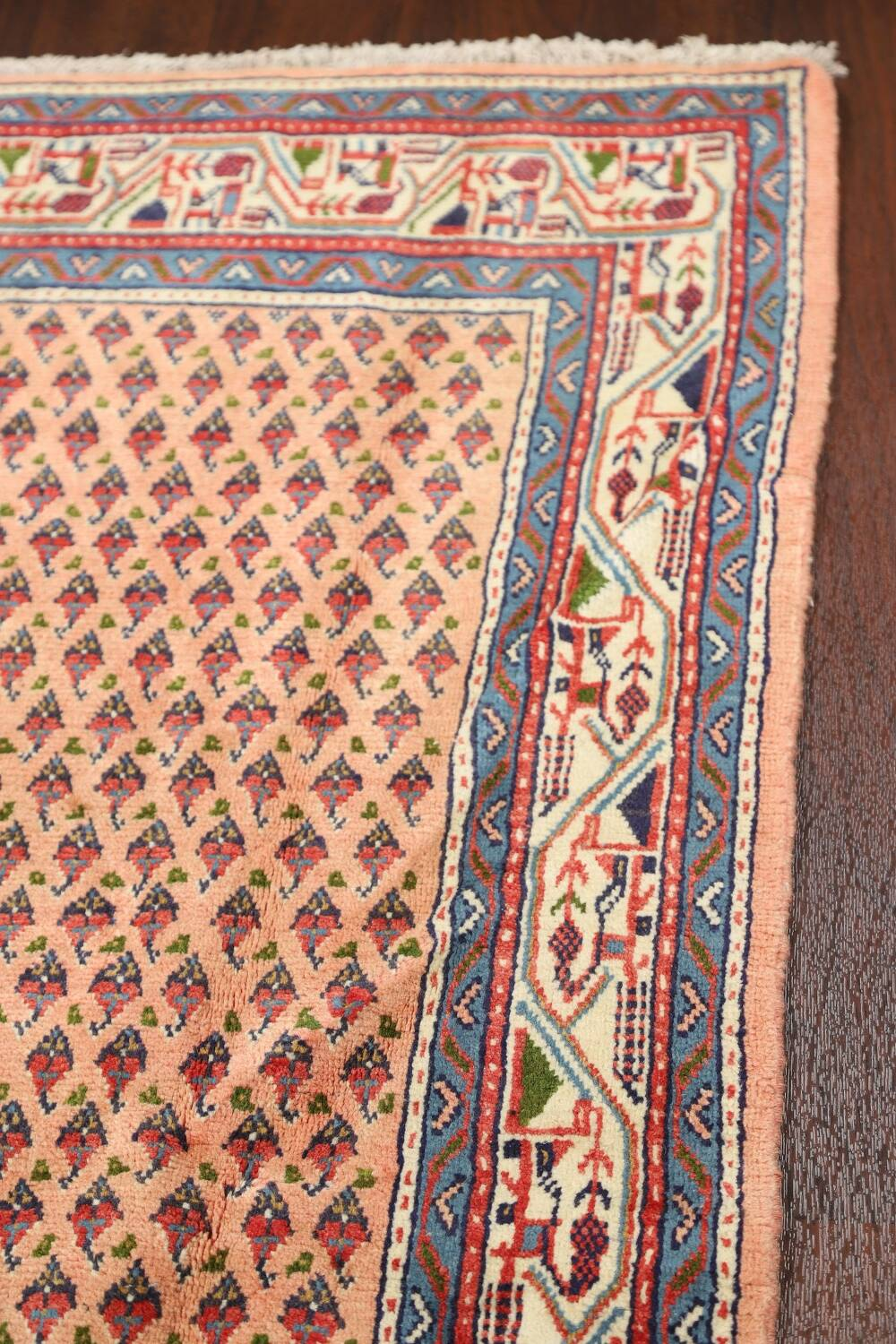 All-Over Peach Botemir Persian Runner Rug 3x14 image 11