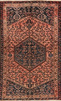 Tribal Geometric Malayer Persian Area Rug 4x6