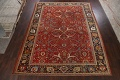 Pre-1900 Antique Sultanabad Vegetable Dye Persian Rug 11x14 image 1