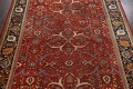 Pre-1900 Antique Sultanabad Vegetable Dye Persian Rug 11x14 image 3