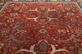 Pre-1900 Antique Sultanabad Vegetable Dye Persian Rug 11x14 image 14