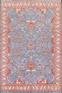 Vegetable Dye Heriz Bakhshayesh Oriental Area Rug 9x12
