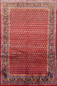Red Boteh Botemir Persian Area Rug 3x5