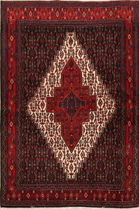 Geometric Senneh Persian Area Rug 4x5