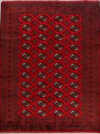 Geometric Red Bokhara Persian Area Rug 7x10