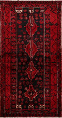 Geometric Zanjan Persian Area Rug 4x6