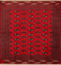Geometric Red Balouch Persian Area Rug 4x5