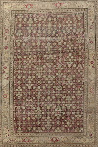 Pre-1900 Antique Karabagh Russian Area Rug 8x13