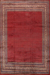 All-Over Boteh Red Botemir Persian Area Rug 9x11