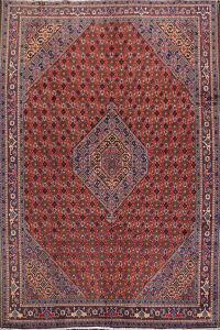 Geometric Red Ardebil Persian Area Rug 7x9