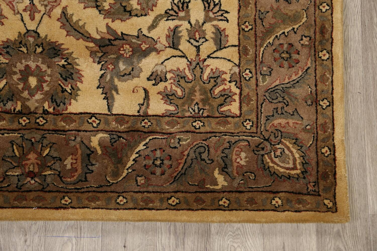 All-Over Floral Agra Oriental Area Rug 6x9 image 5