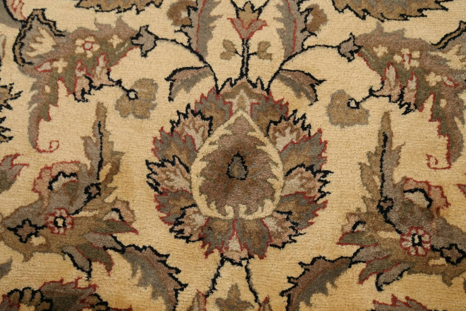 All-Over Floral Agra Oriental Area Rug 6x9 image 10