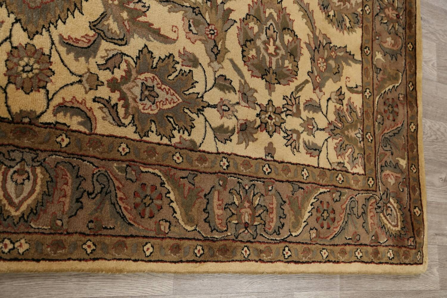 All-Over Floral Agra Oriental Area Rug 6x9 image 12