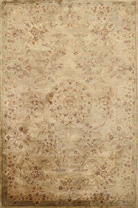 Floral Agra Indian Oriental Area Rug 6x9