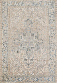 Antique Muted Heriz Persian Area Rug 6x9