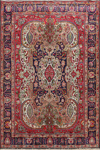 Tabriz Persian Area Rug 7x10