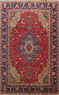 Floral Tabriz Persian Red Area Rug 7x10