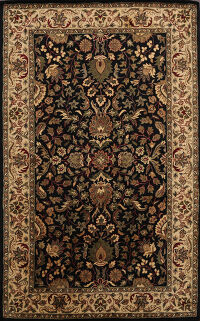 Floral Agra Oriental Area Rug 5x8