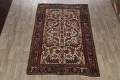 Antique All-Over Heriz Persian Area Rug 6x9 image 2