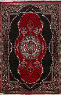 Floral Red Aubusson Turkish Oriental Area Rug 10x13