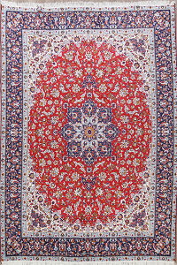 Traditional Kashan Oriental Area Rug 9x12