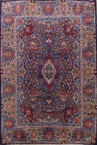 Floral Paisley Kashmar Persian Area Rug 10x13