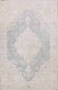 Muted Tabriz Persian Area Rug 9x12