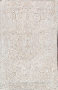 Muted Distressed Tabriz Persian Area Rug 9x10