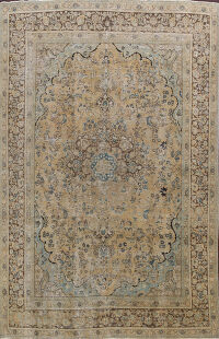 Muted Distressed Mashad Persian Area Rug 9x13