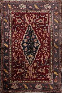 Antique Vegetable Dye Agra Oriental Area Rug 4x5