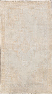 Muted Ferdos Persian Area Rug 3x5