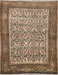 Geometric Malayer Persian Area Rug 3x4