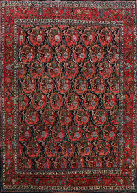 Antique Bidjar Vegetable Dye Persian Area Rug 11x14 Large